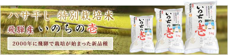 ハサ干し 特別栽培米  飛騨産 いのちの壱